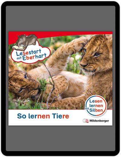 Titelbild: So lernen Tiere