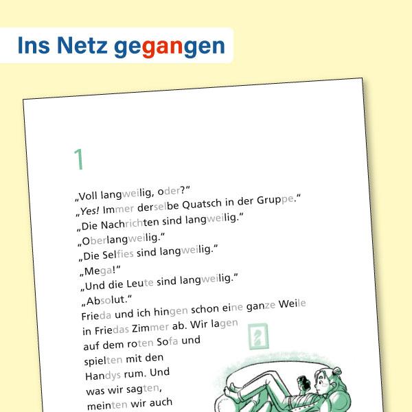 Buch +: Ins Netz gegangen